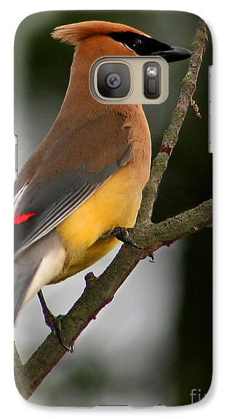 Cedar Wax Wing II Galaxy Case by Roger Becker