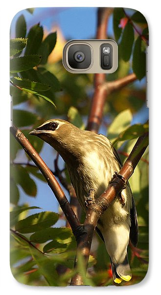 Galaxy Case featuring the photograph Cedar Waxwing by James Peterson