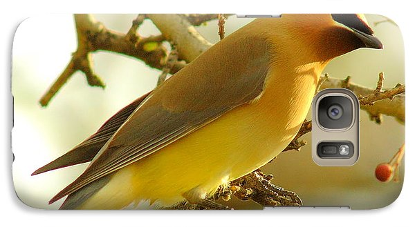 Cedar Waxwing Galaxy Case by Robert Frederick