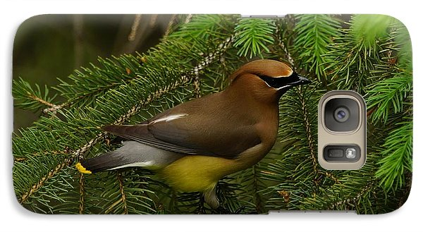 Galaxy Case featuring the photograph Cedar Waxwing by Steven Clipperton