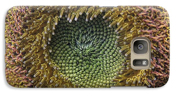 Galaxy Case featuring the photograph Center Of The Sunflower by Yumi Johnson