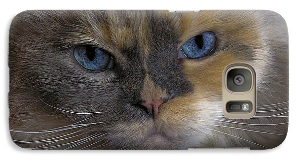 Galaxy Case featuring the photograph Chai by Sandi Mikuse