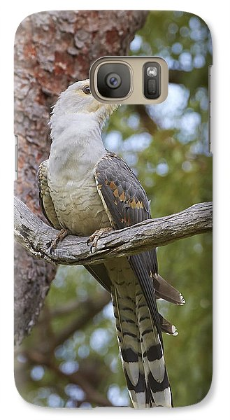 Channel-billed Cuckoo Fledgling Galaxy S7 Case by Martin Willis