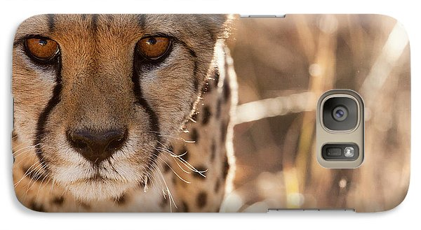 Cheetah Conservation Fund, Namibia Galaxy Case by Janet Muir