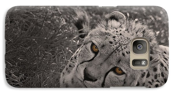 Cheetah Eyes Galaxy Case by Martin Newman