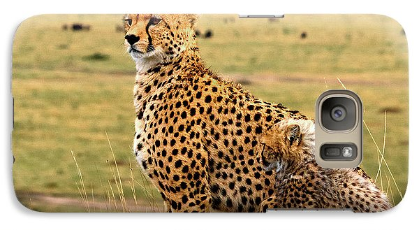 Cheetahs Galaxy Case by Babak Tafreshi