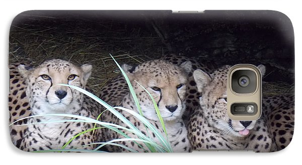 Galaxy Case featuring the photograph Cheetahs by Martin Blakeley