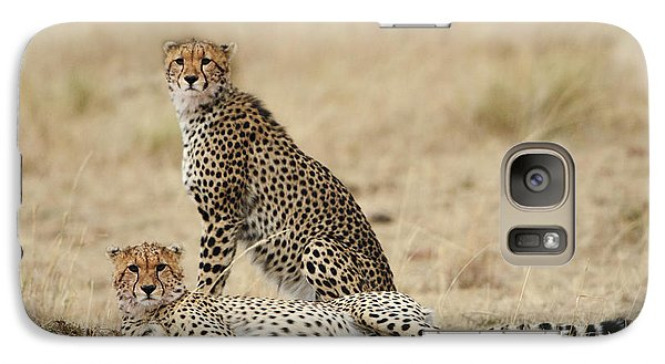 Galaxy Case featuring the photograph Cheetahs Resting by Phyllis Peterson