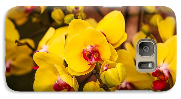 Galaxy Case featuring the photograph Chelsea Yellow by Ross Henton