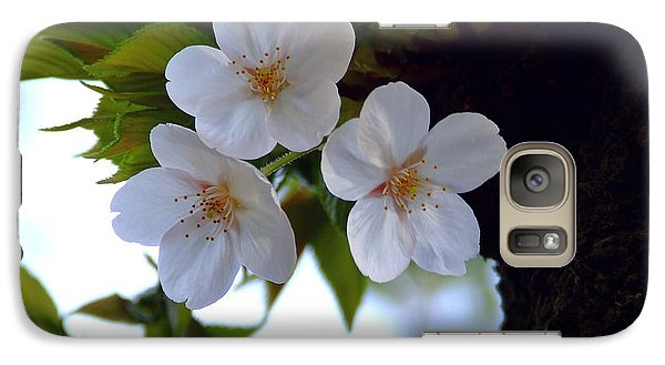 Galaxy Case featuring the photograph Cherry Blossom by Andrea Anderegg