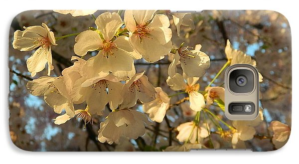 Galaxy Case featuring the photograph Cherry Blossoms by Emmy Marie Vickers