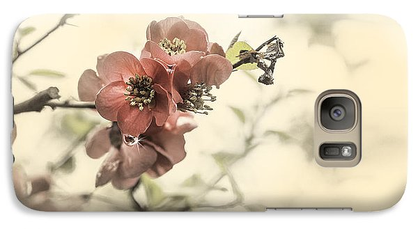 Galaxy Case featuring the photograph Cherry Blossoms by Peter v Quenter