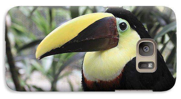 Galaxy Case featuring the photograph Chestnut-mandibled Toucan by Teresa Zieba