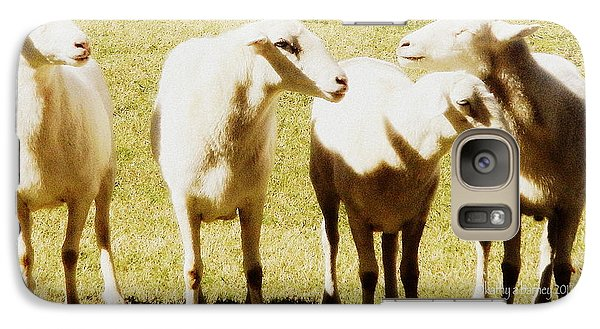 Galaxy Case featuring the photograph Cheviot Sheep by Kathy Barney