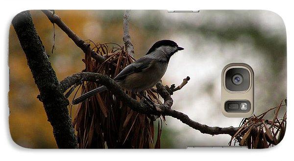 Galaxy Case featuring the photograph Chickadee In A Tree by Kimberly Mackowski