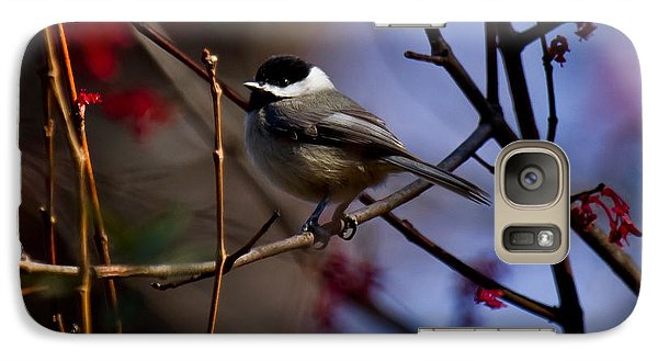 Galaxy Case featuring the photograph Chickadee by Robert L Jackson