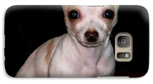 Galaxy Case featuring the photograph Chihuahua Puppy by Maria Urso