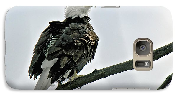 Galaxy Case featuring the photograph Chilkat River Bald Eagle by Stephen  Johnson