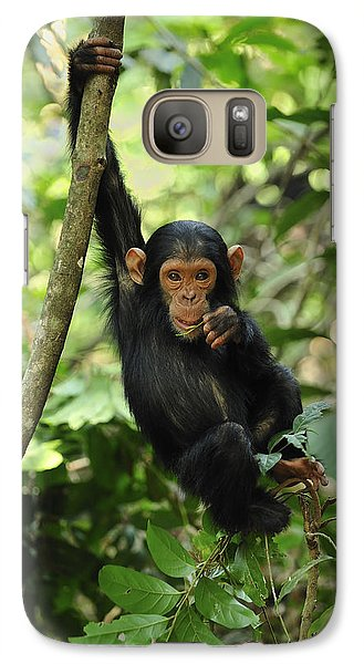 Chimpanzee Baby On Liana Gombe Stream Galaxy S7 Case