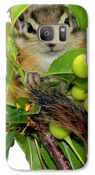 Galaxy Case featuring the photograph Chip Or Dale by Barbara Chichester