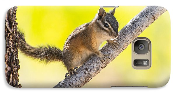 Galaxy Case featuring the photograph Chipmunk In Tree by Janis Knight