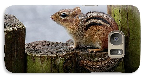Galaxy Case featuring the photograph Chipmunk by Kathy Gibbons