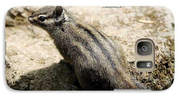 Galaxy Case featuring the photograph Chipmunk On A Rock by Belinda Greb
