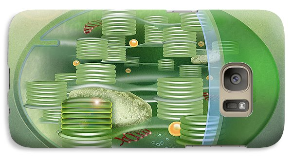 Galaxy Case featuring the painting Chloroplast - Basis Of Life - Plant Cell Biology - Chloroplasts Anatomy - Chloroplasts Structure by Urft Valley Art