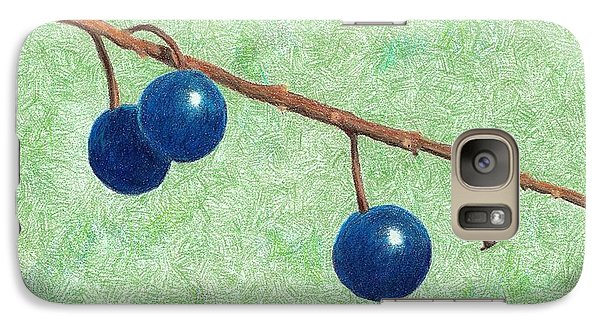 Galaxy Case featuring the drawing Choke Cherry by Sheila Byers