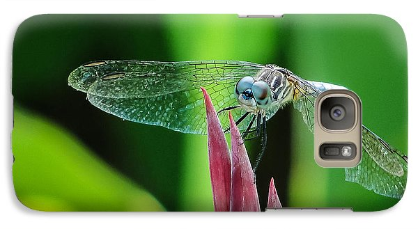Galaxy Case featuring the photograph Chomped Wing Squared by TK Goforth