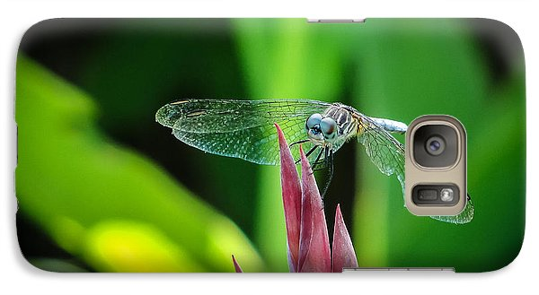 Galaxy Case featuring the photograph Chomped Wing by TK Goforth