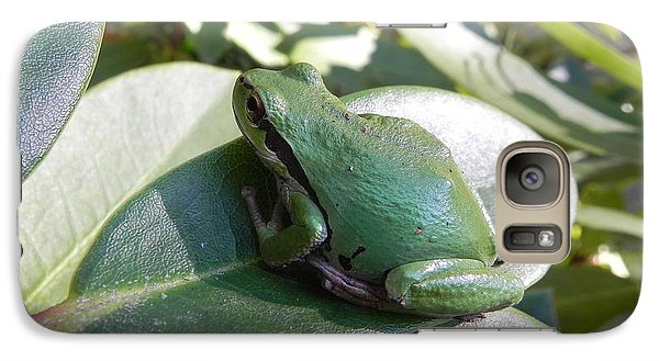 Galaxy Case featuring the photograph Chorus Frog On A Rhodo by Cheryl Hoyle