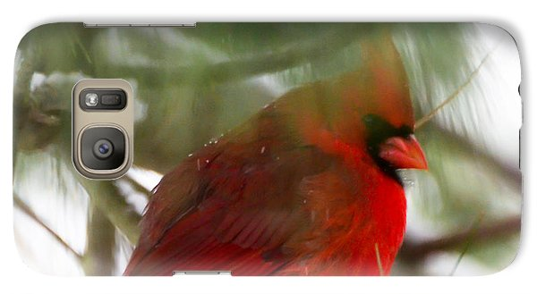 Galaxy Case featuring the photograph Christmas Cardinal by Kerri Farley