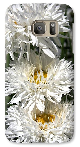Galaxy Case featuring the photograph Chrysanthemum Named Crazy Daisy by J McCombie