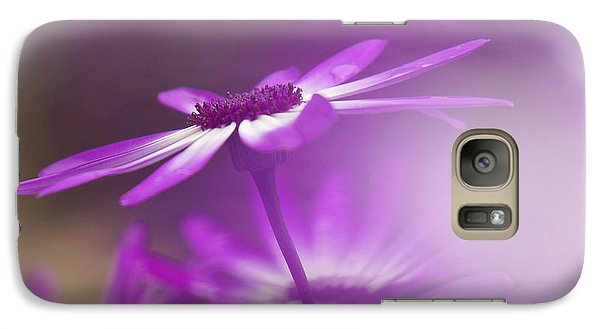Galaxy Case featuring the photograph Cineraria by Inge Riis McDonald