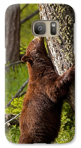 Galaxy Case featuring the photograph Cinnamon Boar Black Bear by J L Woody Wooden
