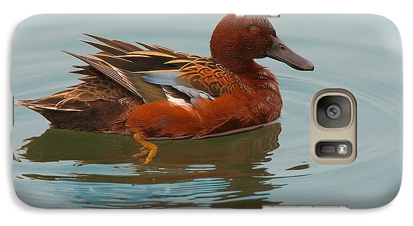 Galaxy Case featuring the photograph Cinnamon Teal by Ram Vasudev