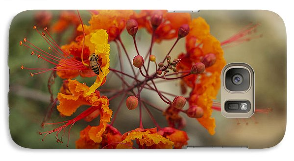 Galaxy Case featuring the photograph Circle Of Flowers by Amber Kresge