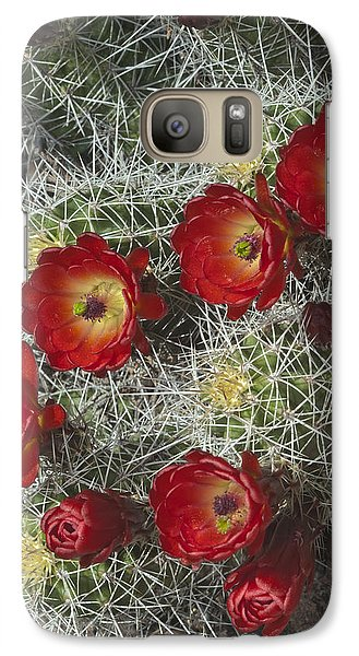 Galaxy Case featuring the photograph Claret Cactus - Vertical by Gregory Scott