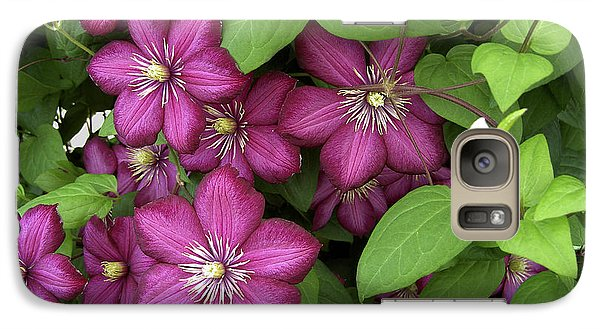 Galaxy Case featuring the photograph Clematis by Penny Lisowski