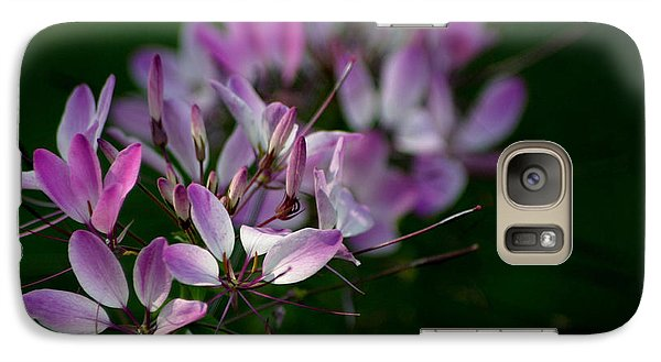 Galaxy Case featuring the photograph Cleome by Living Color Photography Lorraine Lynch