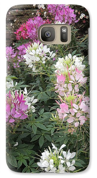 Galaxy Case featuring the photograph Cleome - Spider Flower by Jayne Wilson