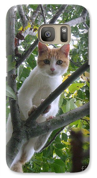 Galaxy Case featuring the photograph Climbing Kitty by Wendy Coulson