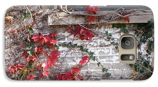 Galaxy Case featuring the photograph Clinging Vine by Suzanne McKay