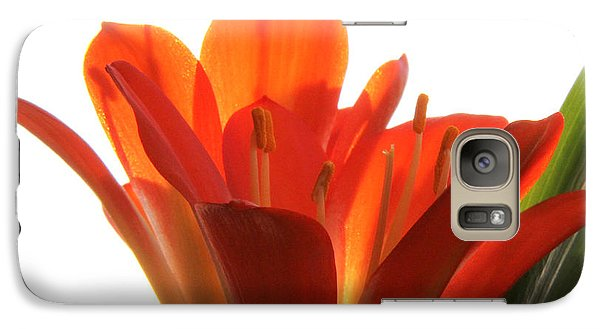 Galaxy Case featuring the photograph Clivia by Jivko Nakev