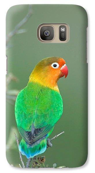 Close-up Of A Fischers Lovebird Galaxy S7 Case