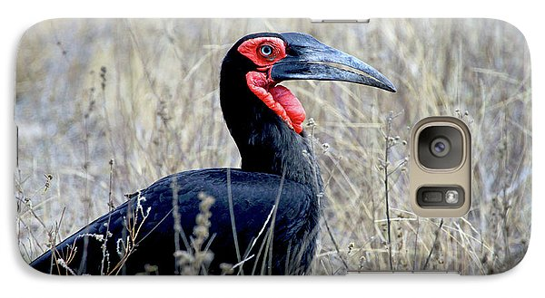 Close-up Of A Ground Hornbill, Kruger Galaxy S7 Case by Miva Stock