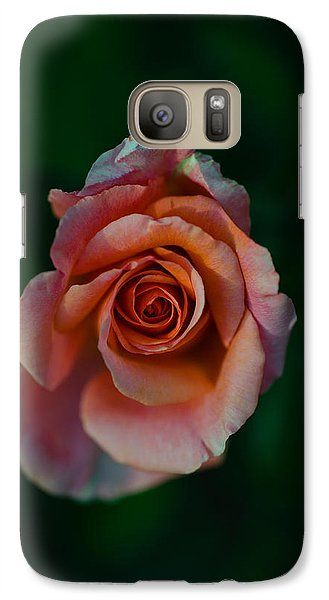 Close-up Of A Pink Rose, Beverly Hills Galaxy S7 Case by Panoramic Images