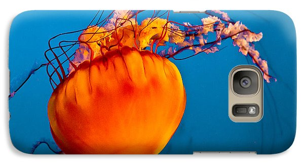 Galaxy Case featuring the photograph Close Up Of A Sea Nettle Jellyfis by Eti Reid
