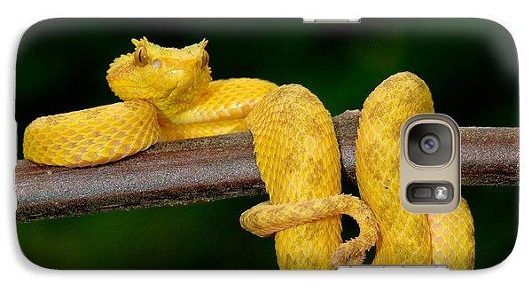 Close-up Of An Eyelash Viper Galaxy S7 Case